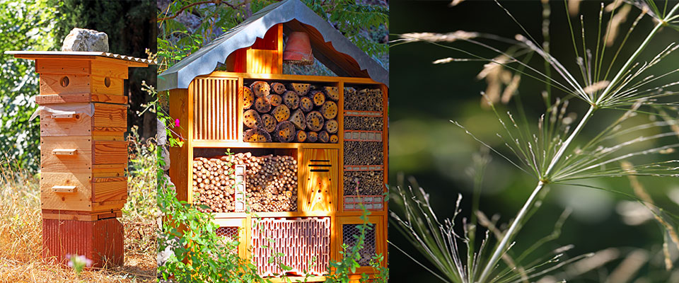 La maison de laurence for Maison container 50000